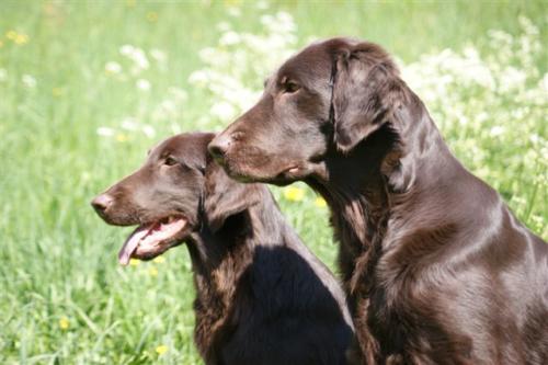 91 Mara und Hayley (4)
