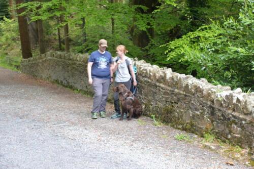 76 Miles Irland 2016 (3)