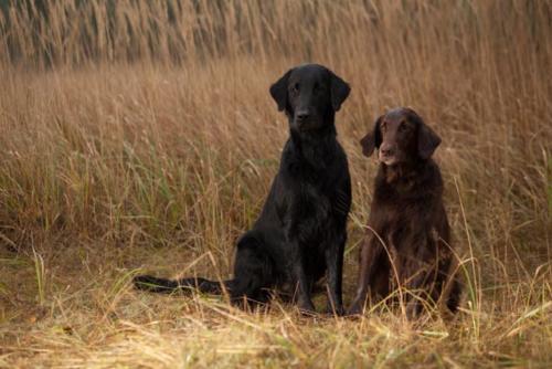 188 Owen und Amy (8)