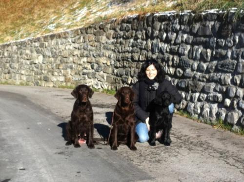 95 Hayley, Maxi und Bea mit Phinja