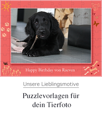 tierfotopuzzle