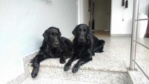 190 Rhea und Owen (2)