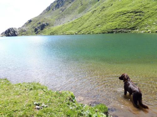 Tabasco im Südtirol (15)