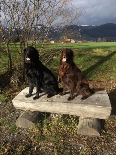 Tayra und Lia (1) (1)