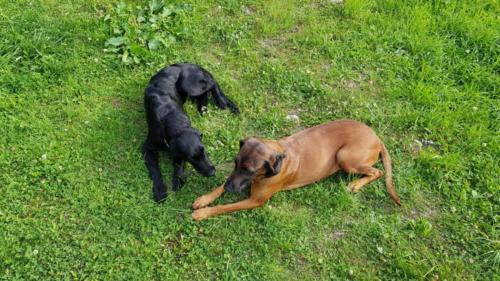 Usha und Mara (3)