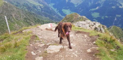 Vasco Lanzelt im Südtirol (1)