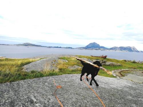 X-Snus Ferien Norwegen (3)