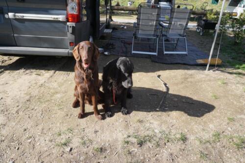 Xeo und Holly (1) (1)